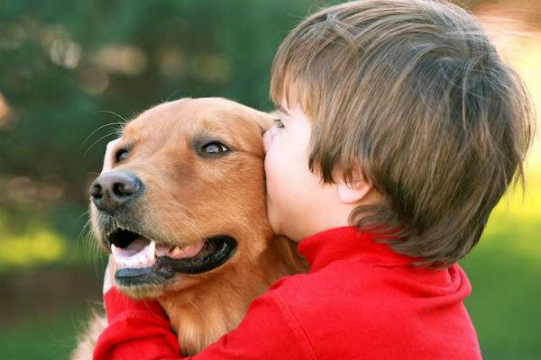 bambino bacia cane