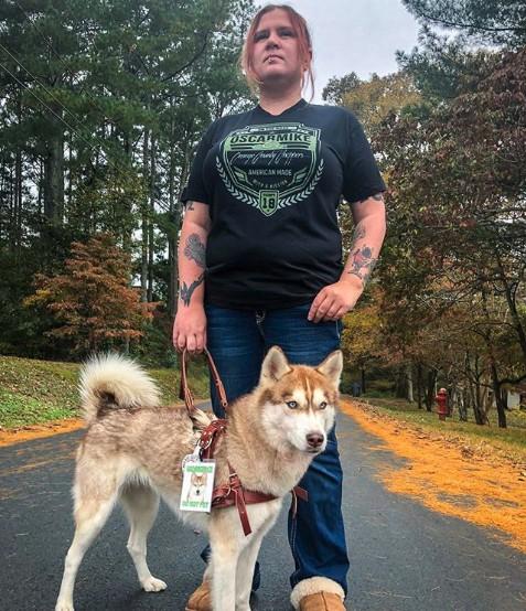 Cane accompagna il proprietario in un bosco per fargli trovare una scatola di gattini abbandonati