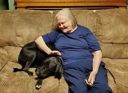 cane-nonna
