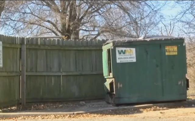 Cagnolina incinta abbandonata nella spazzatura