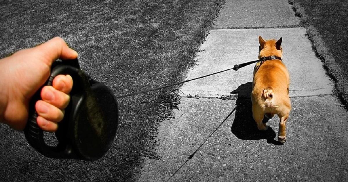 guinzaglio-retrattile-un-pericolo-per-luomo-e-per-il-cane