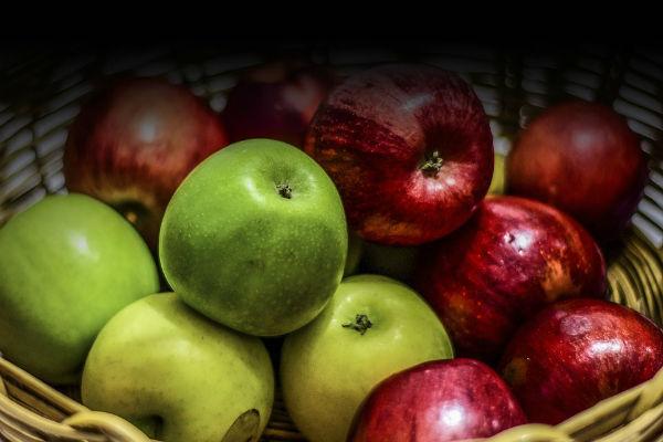 I cani possono mangiare le mele?