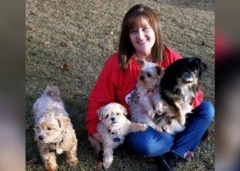 infermiera-raccoglie-pacemaker-cani