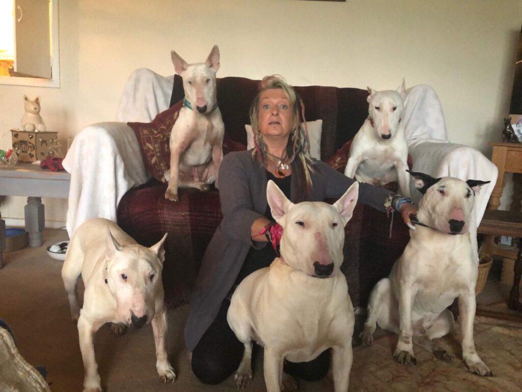 Cani o marito? La donna sceglie i cani
