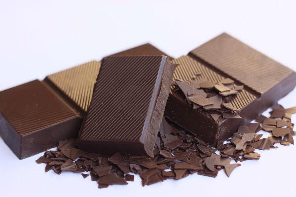 Perché i cani non possono mangiare cioccolata?