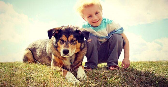 rispetto-cani-nuova-materia-scuola