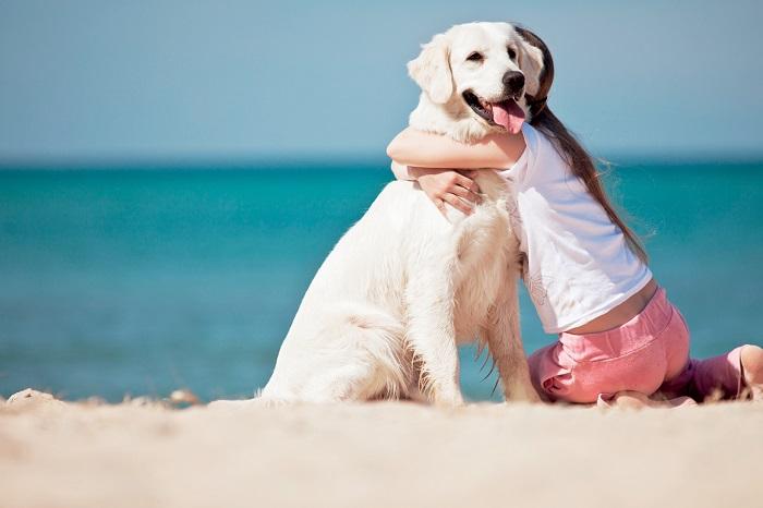 Cane abbracciato da una bambina in spiaggia