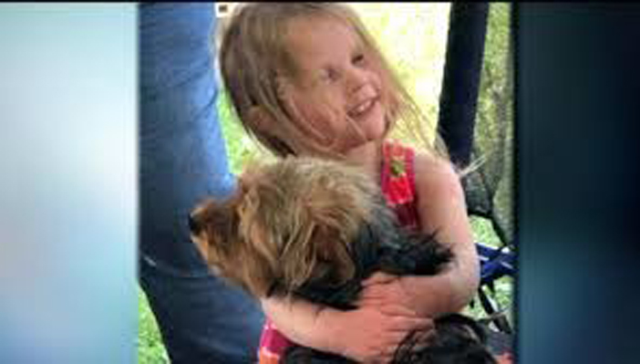 Cane abbracciato da una bambina