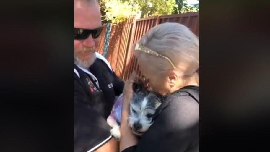 Cane abbracciato dalla sua famiglia