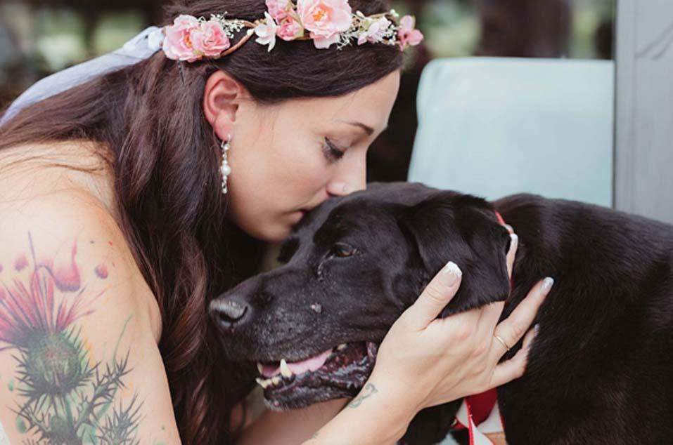 Cane baciato da una sposa