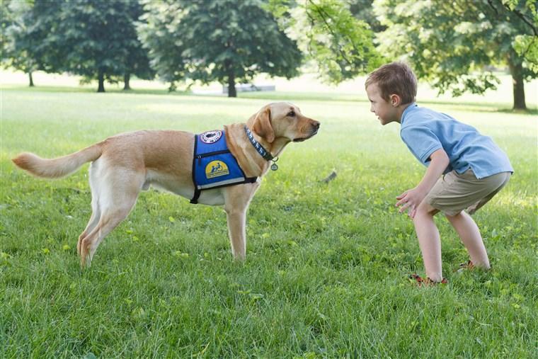 Cane che gioca con un bambino