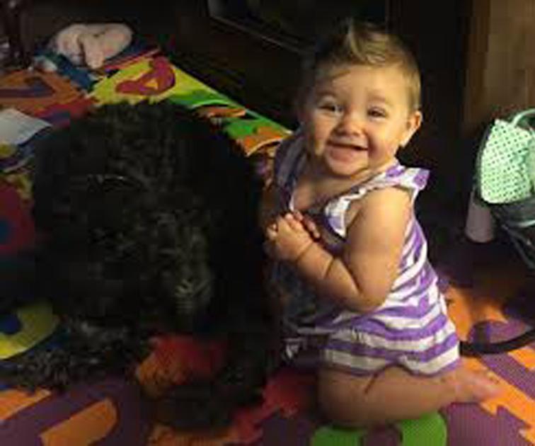 Cane con una bambina piccola