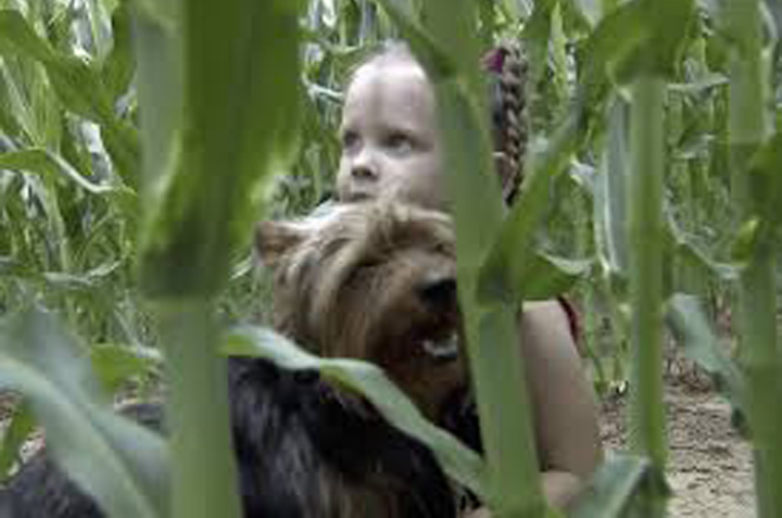 Cane con una bambina in un campo
