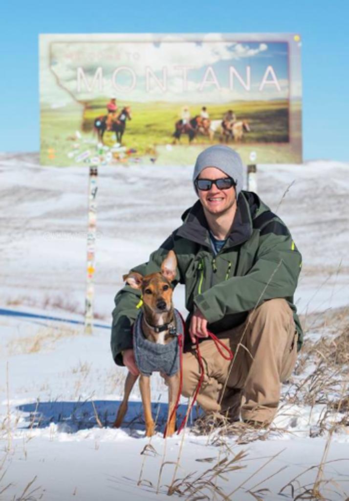Cane in montagna con un uomo