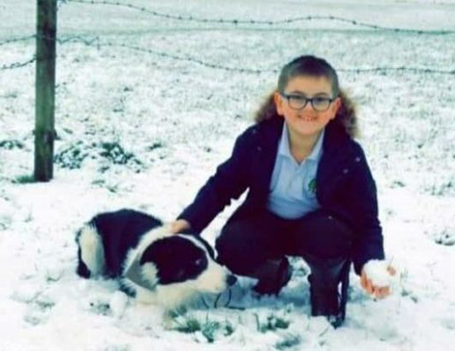 Cane insieme ad un bambino