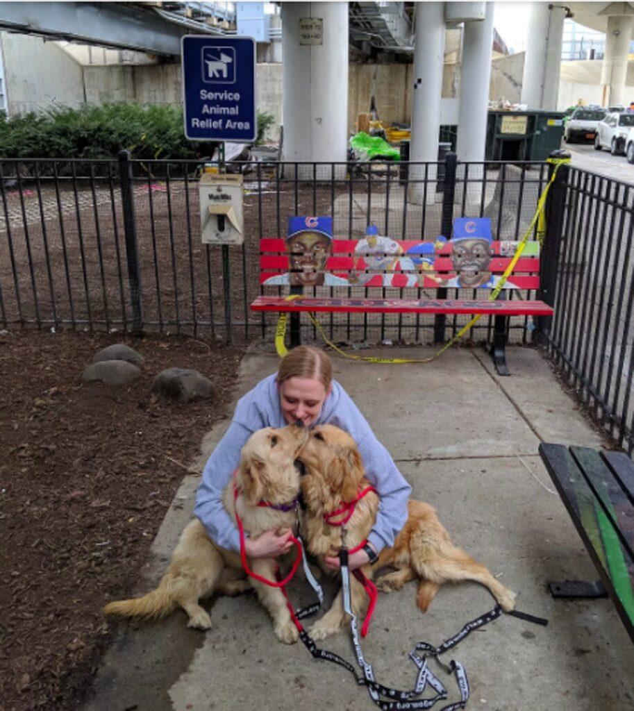 Due cani abbracciati da una donna