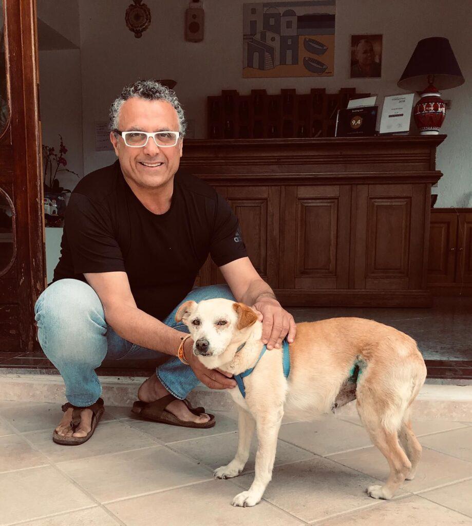 Nicoletta, il cane Hachiko di Ischia
