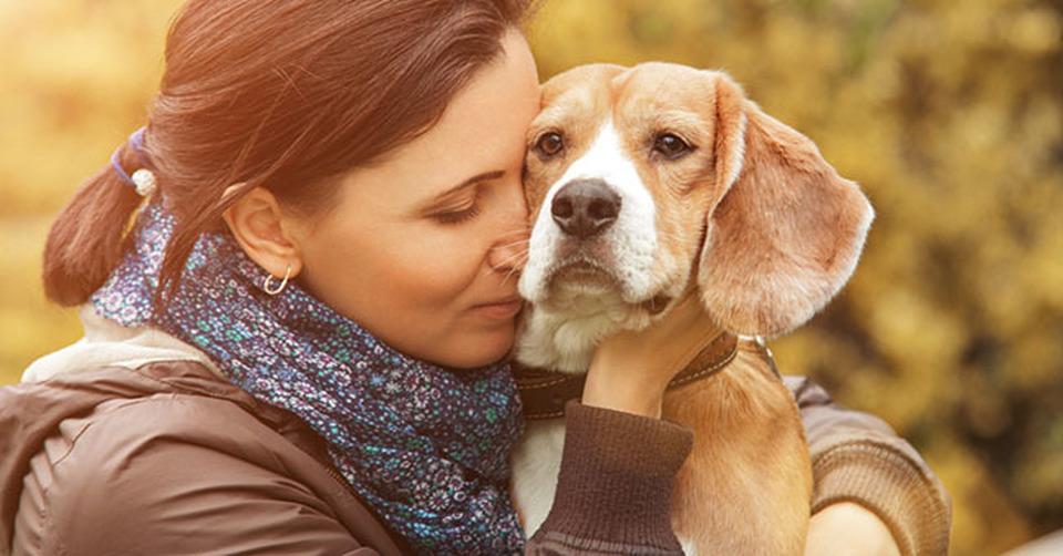 abbracciare-cane