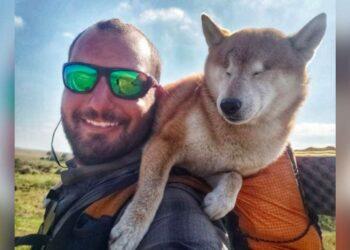 cane-cieco-affronta-avventura-incredibile-insieme-proprietario