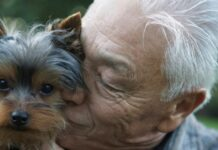 cane e coccole