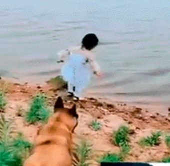 cane-fiume