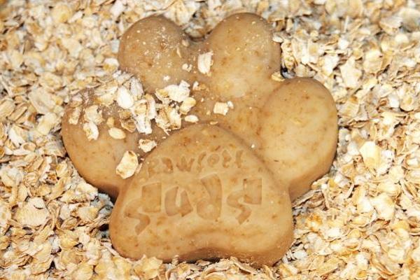 biscotto per cani su avena