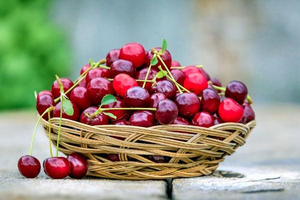 un cesto di ciliegie