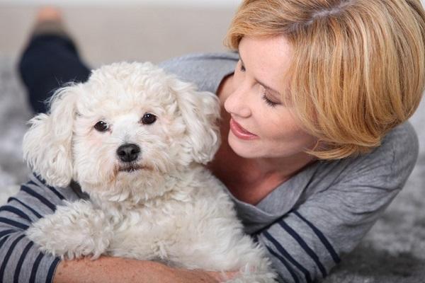 I cani provano compassione oppure no?