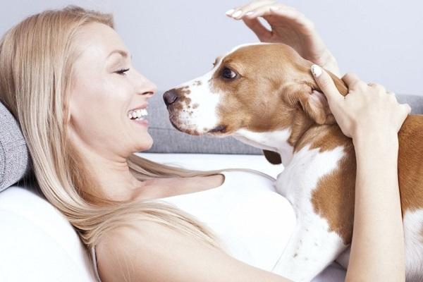 cane disteso su ragazza