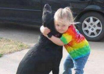 il-cane-si-spegne-e-la-sua-piccola-umana-scrive-una-lettera-a-dio
