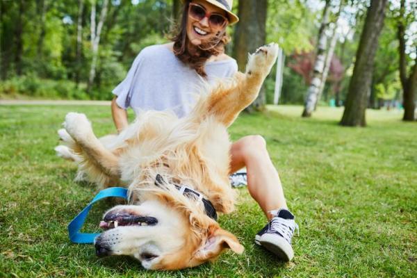 divertirsi con il cane