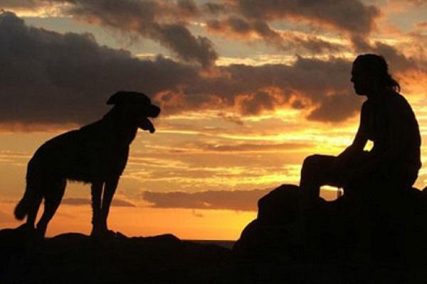 rapporto cane e uomo
