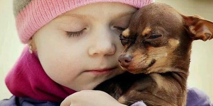 Pinscher e bambini: come creare un rapporto speciale