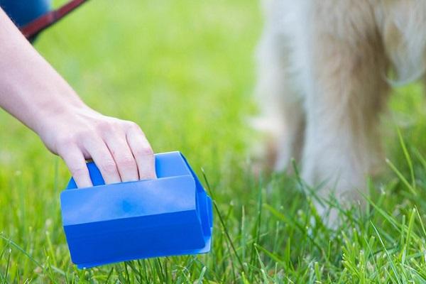 strumento per raccogliere la cacca del cane