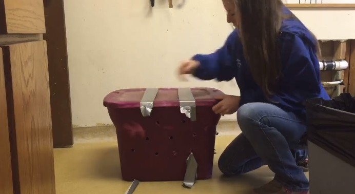 scatola-abbandonata