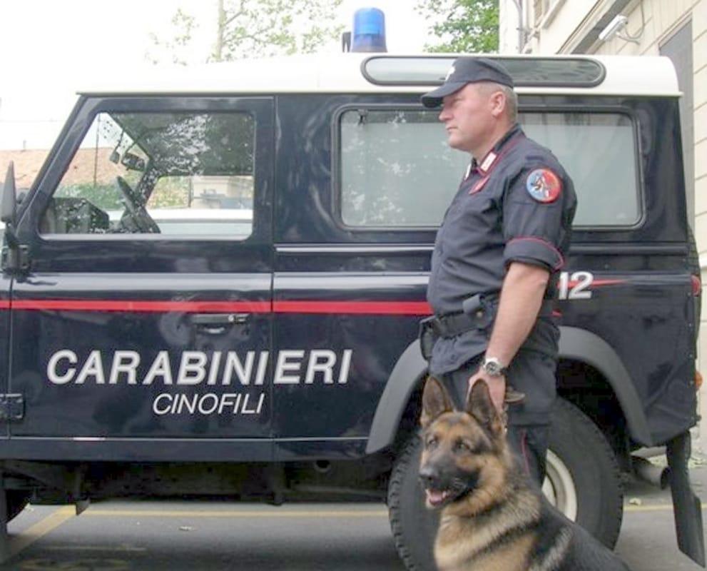 Polia, il cane Enno rinviene 120 munizioni durante una perquisizione