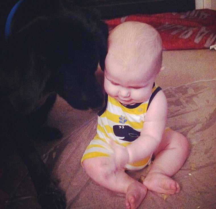 Cane che coccola una bambina