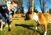 Cane con due zampe insieme ad una ragazza