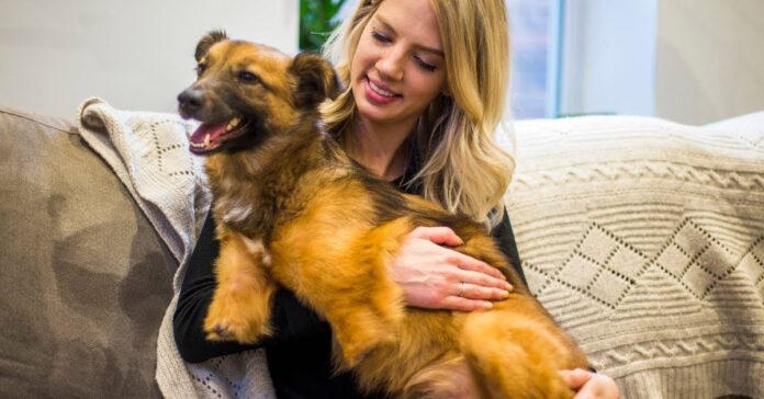 Cane senza zampe con una donna