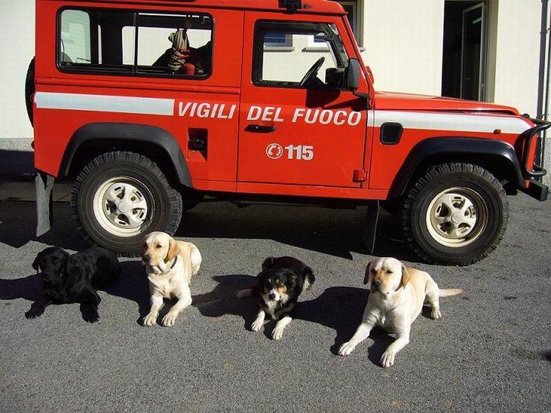 Genova: al via la prima unità mobile veterinaria per i ...