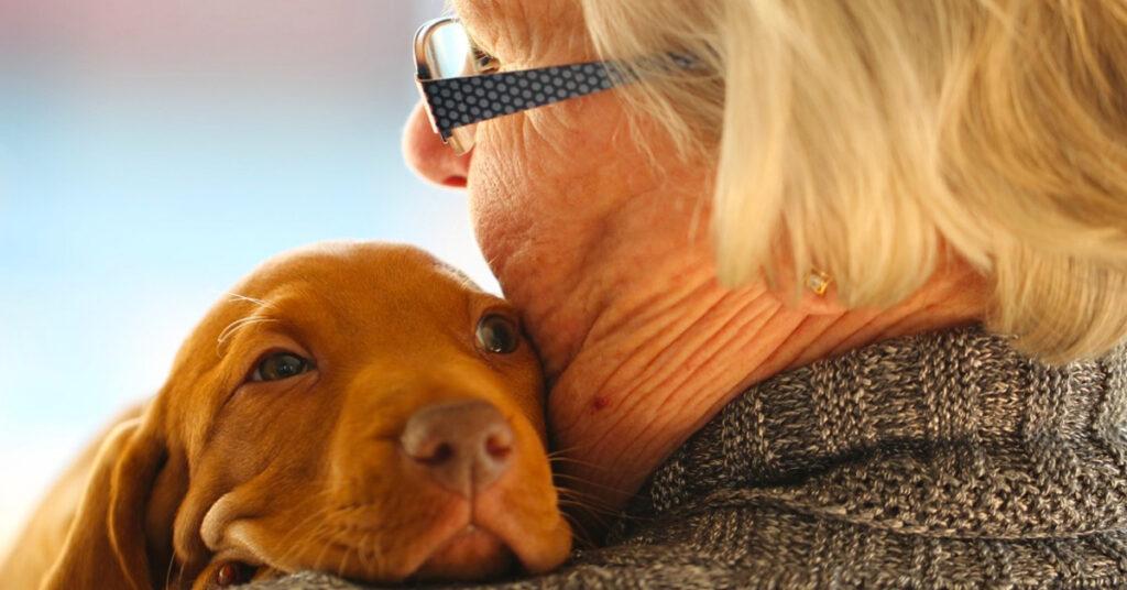 Cucciolo di cane con una donna anziana
