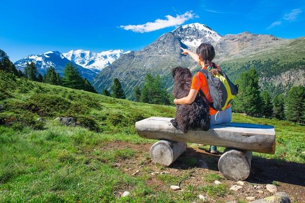 cane durante escursione in montagna