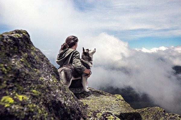 legame cane padrone