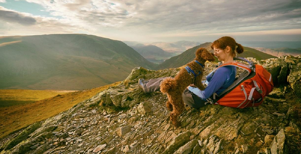 cane e donna in montagna