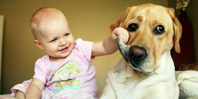 cane-bambini