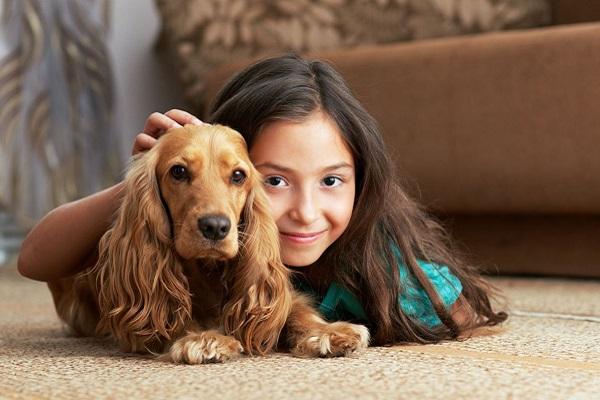10 piccoli piaceri nell'avere un cane di razza piccola che devi conoscere
