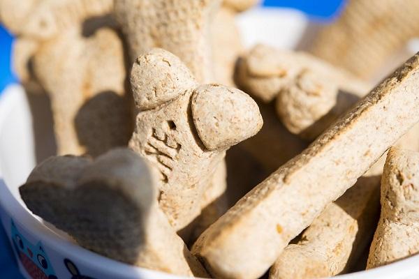 I cani possono mangiare le barbabietole?