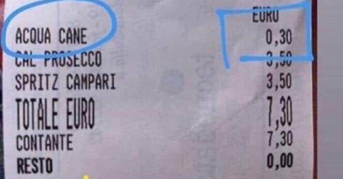 jesolo-il-cane-ha-sete-il-costo-dellacqua-e-di-30-centesimi