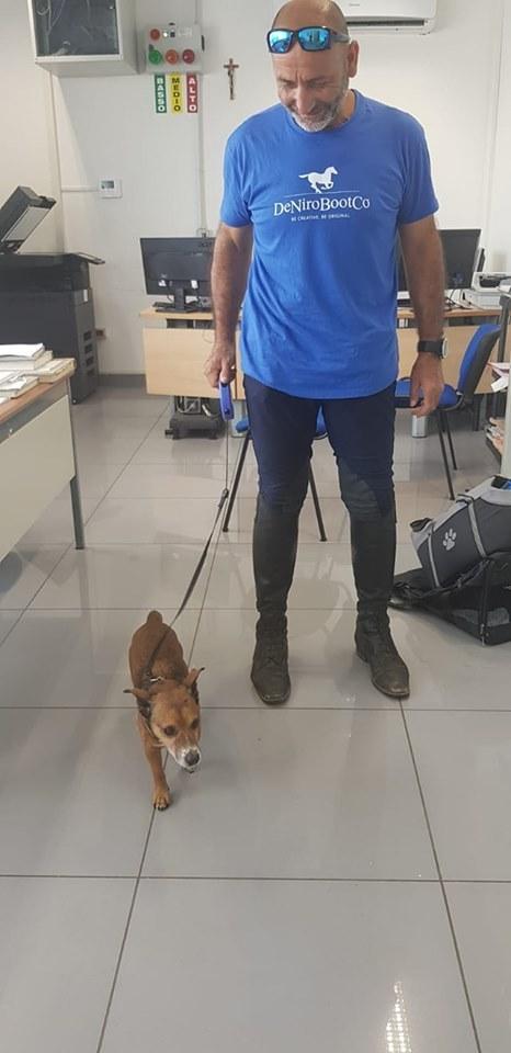 Brindisi, cane abbandonato in aeroporto viene salvato