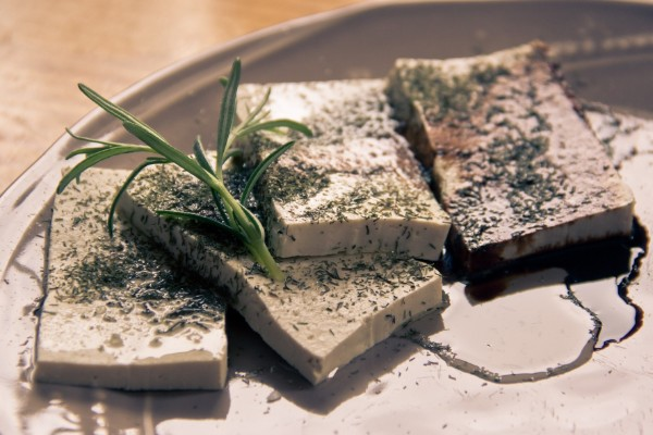 Cani e tofu vanno d'accordo? Lo possono mangiare?